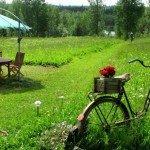 О неоспоримой пользе свежего воздуха и отдыха на природе