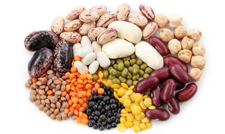 белок и вегетарианство