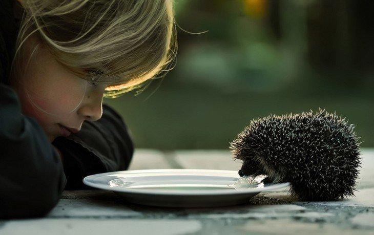 проявлять доброту