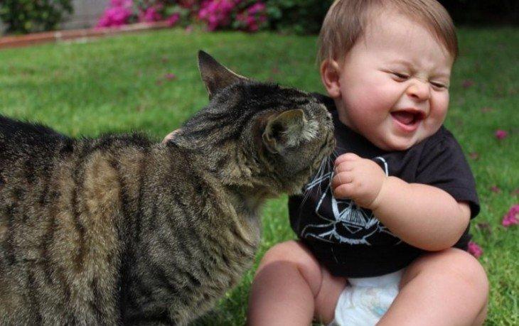 животные лечат детей