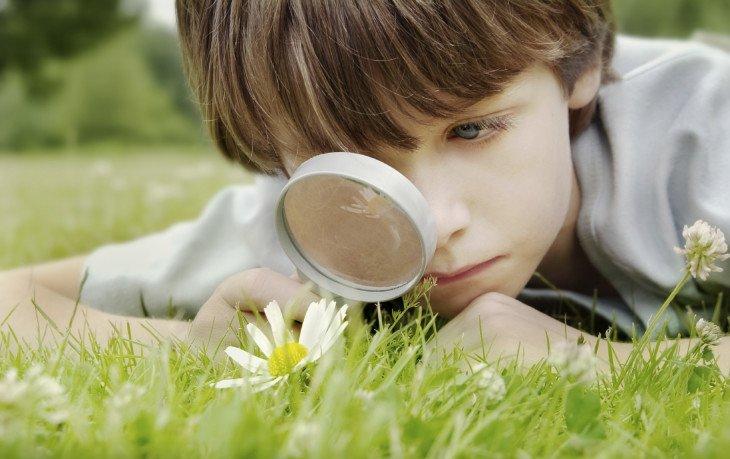 польза любопытства