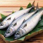 Польза, вред, калорийность рыбы путассу на 100 грамм