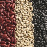 Калорийность фасоли на 100 грамм, польза, вред продукта