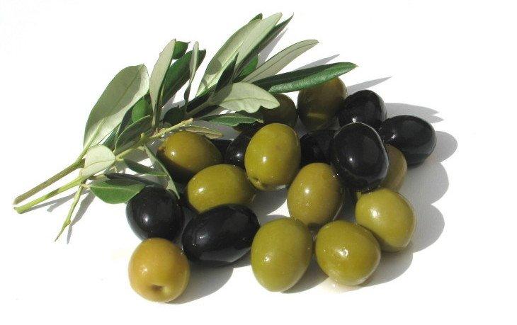 оливки калорийность на 100 грамм
