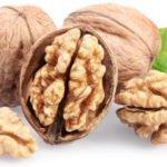 Польза, вред, калорийность грецкого ореха на 100 грамм