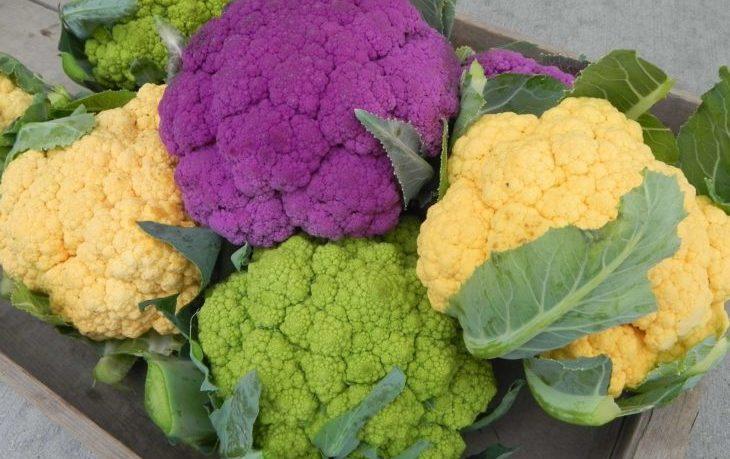 цветная капуста калорийность на 100 грамм