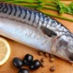Польза, вред, калорийность скумбрии на 100 грамм