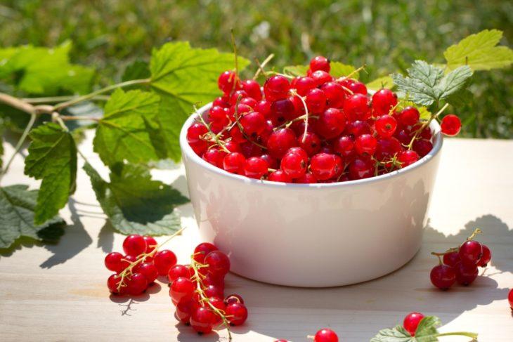 красная смородина калорийность на 100 грамм