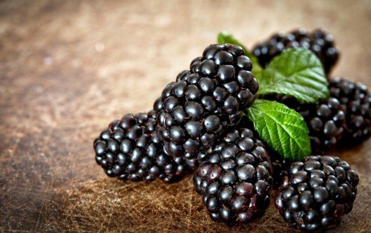 калорийность ежевики свежей