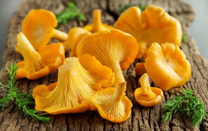грибы лисички калорийность