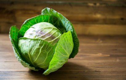 белокочанная капуста польза и вред