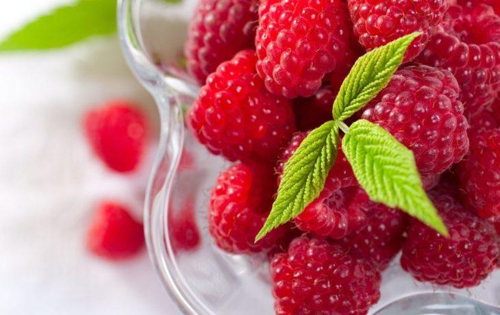 малина ягода польза и вред