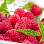 Польза и вред малины для организма человека