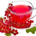 Польза и вред красной смородины для здоровья человека
