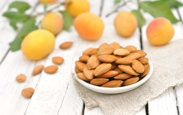 ядра абрикосовых косточек польза и вред