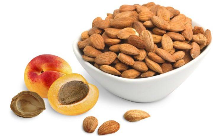 орешки абрикоса польза и вред