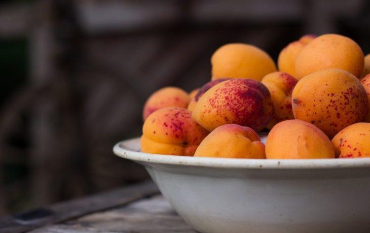 польза свежих абрикосов