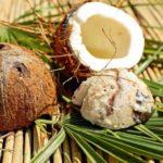 Польза и вред кокоса для организма человека