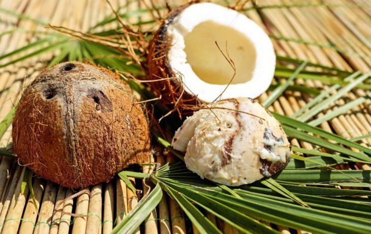 кокос польза и вред для организма