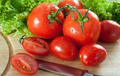 польза помидор для почек