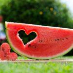 Польза и вред арбуза для здоровья организма человека