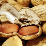 Польза и вред орехов арахиса для организма человека