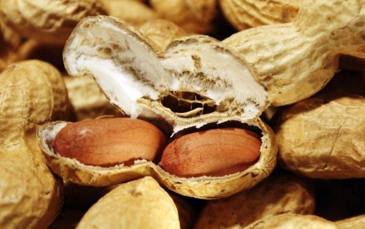 орехи арахис польза и вред для организма