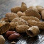 Польза и вред орехов арахиса для здоровья человека