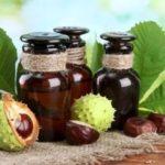 Польза и вред для здоровья настойки, цветов, экстракта конского каштана