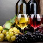Польза и вред виноградного вина для здоровья