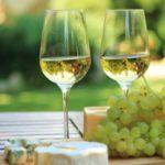 Польза и вред белого вина для здоровья организма