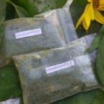 Польза и вред листьев топинамбура