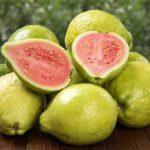 Польза и вред фрукта гуавы для организма человека