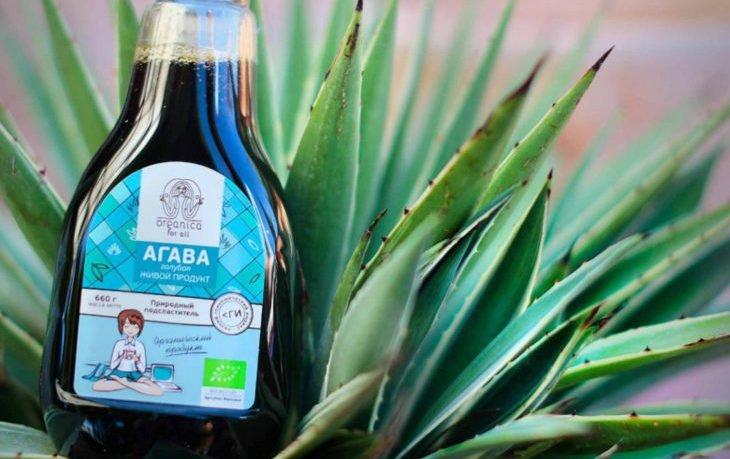 сироп агавы польза и вред