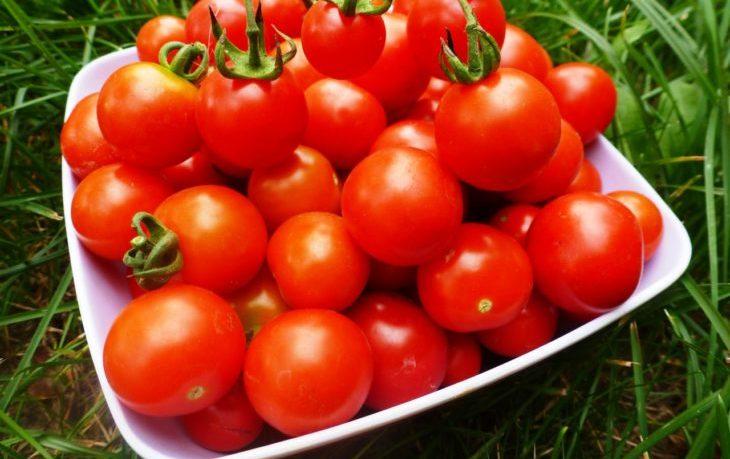 томаты и диабет польза и вред