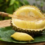 Польза и вред фрукта дуриана для организма