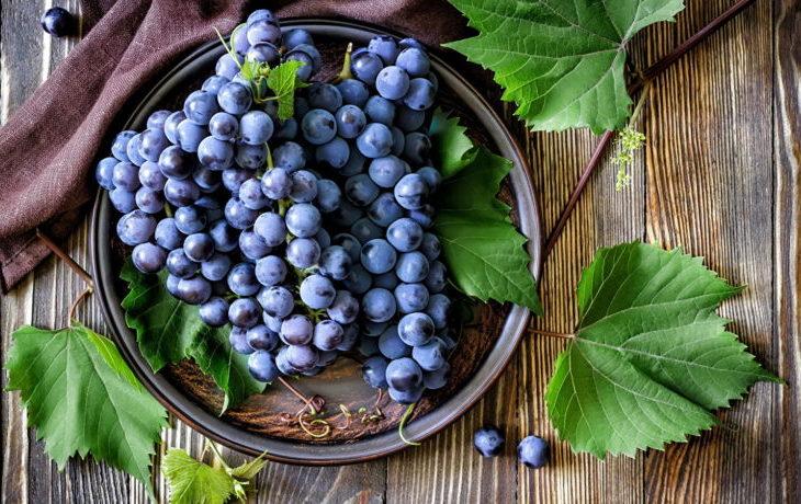 хочется винограда почему
