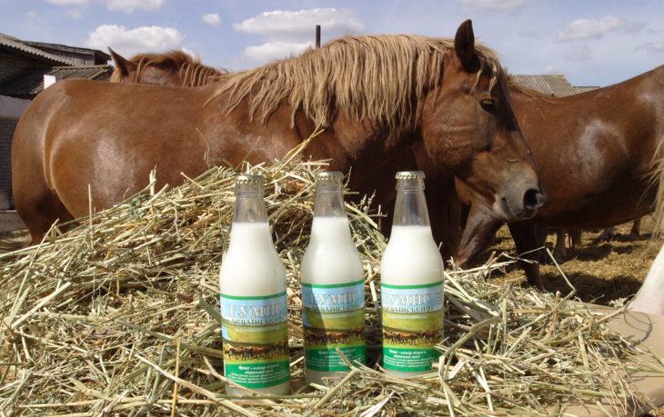 польза кумыса из кобыльего молока
