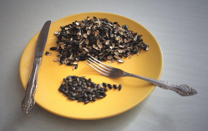 вредно ли кушать семечки