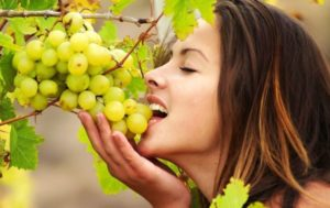 Насколько полезен виноград? Подборка фактов
