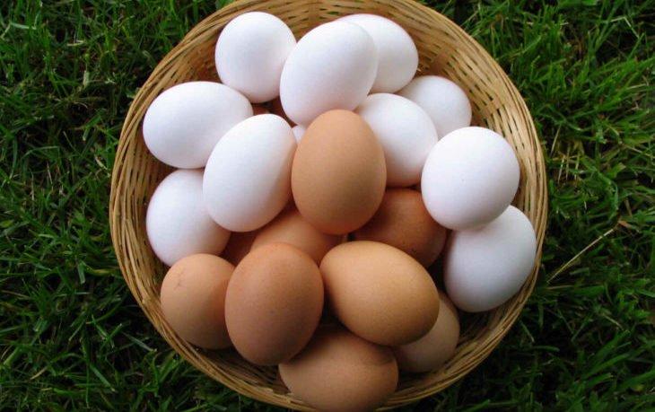 полезно ли есть яйца каждый день