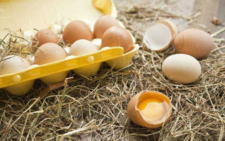 полезно ли есть яйцо каждое утро