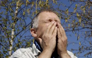 Что можно и нельзя есть при аллергии на березу