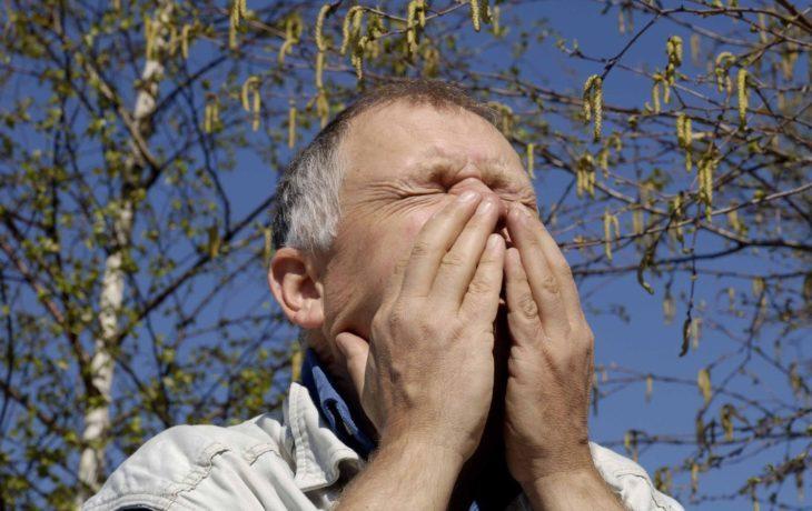 что можно есть при аллергии на березу