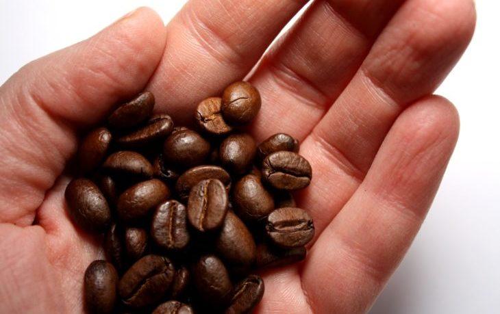 полезно или вредно есть кофейные зерна