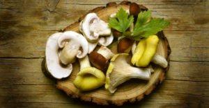 Какие есть полезные вещества в грибах