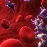 Что можно и нельзя есть при пониженных тромбоцитах