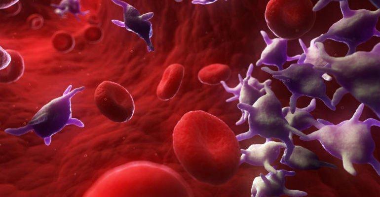 что нельзя есть при низких тромбоцитах