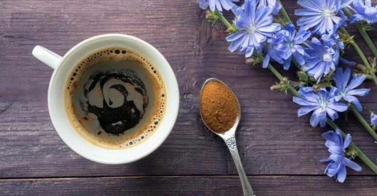 полезно ли пить цикорий вместо кофе