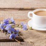 Полезно ли пить растворимый цикорий с молоком